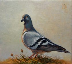 amazing dove oil painting