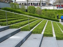 modern outdoor grass steps